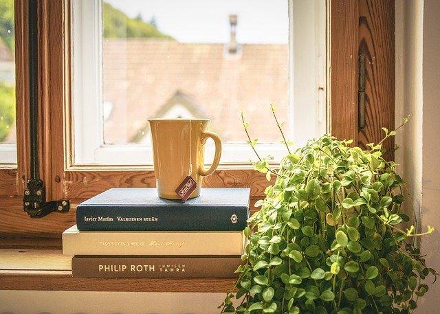 knihy u okna